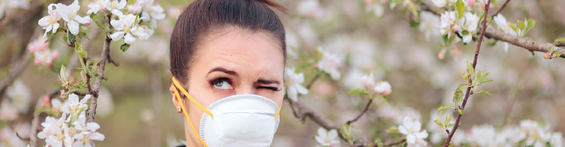 allergie_header-01